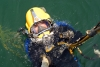 How to become a Commercial AirDiver.